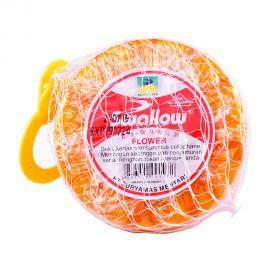 Swallow #107